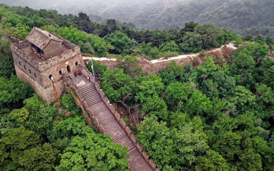 Chinesische Medizin ohne Mauer