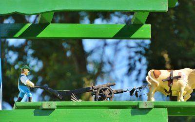 Die Geschichte vom Ochsen und dem Pflug